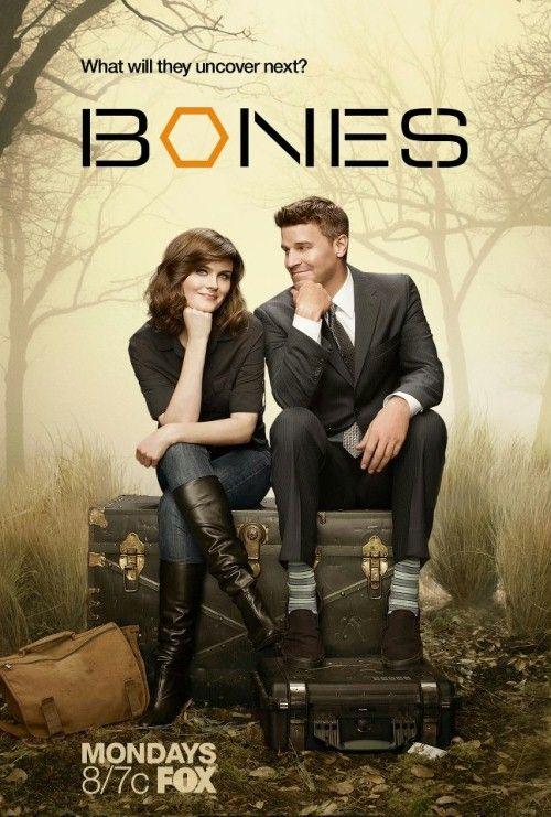 Kości / Bones