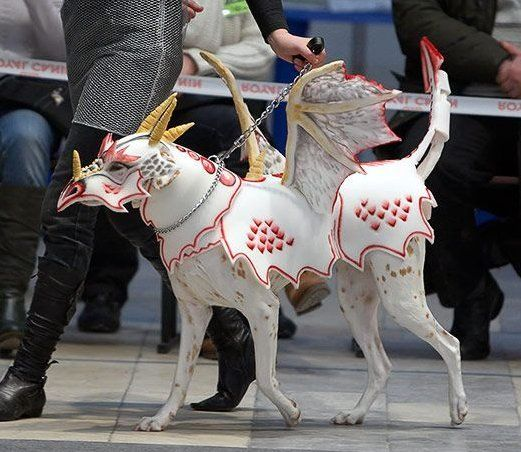 community post dragon dog - Dog Halloween Ideas