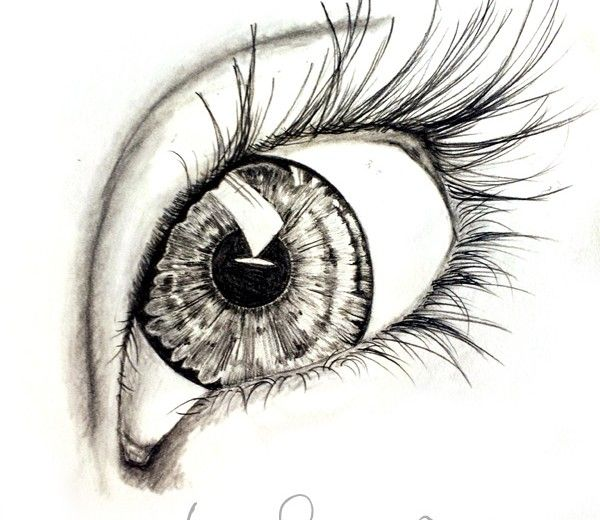 pencil, charcoal drawing of an eye. artist steph z.