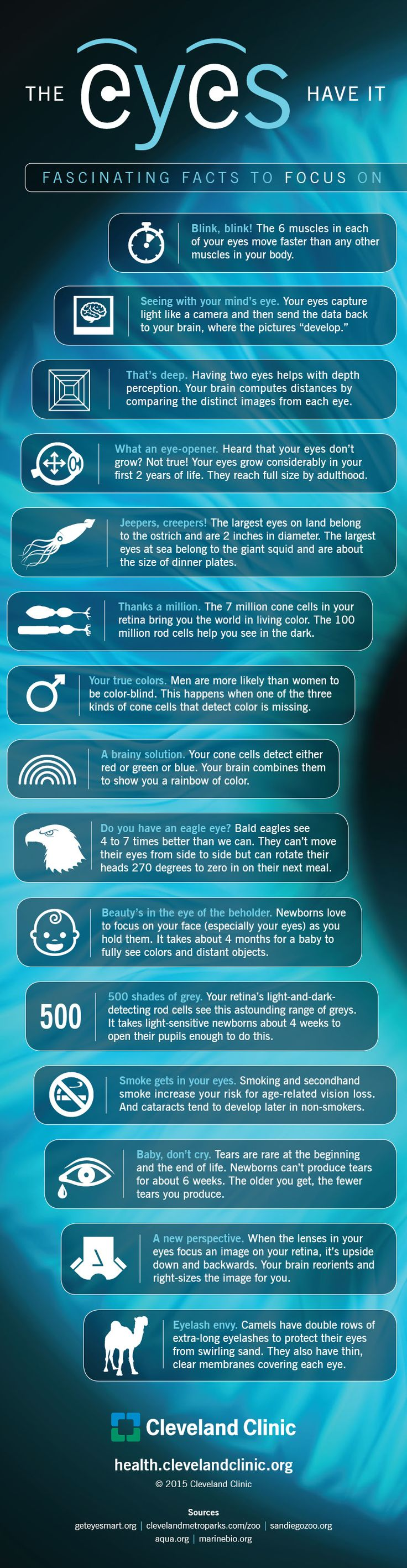 15 Fascinating Facts About Your Eyes (Infographic ...