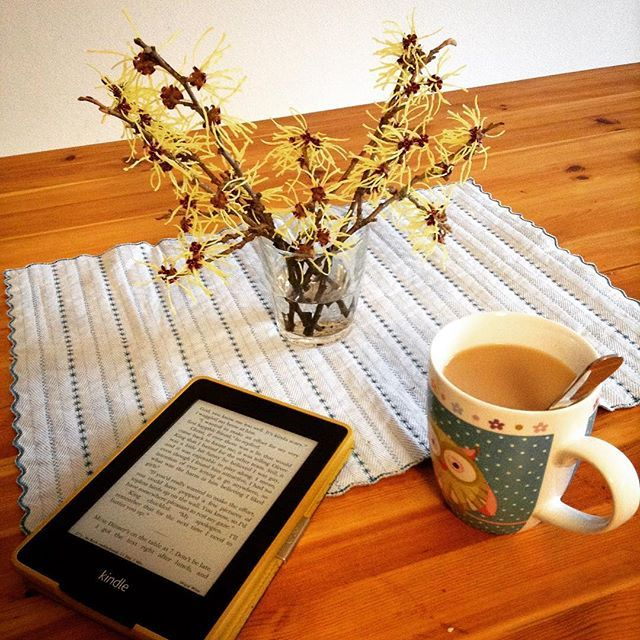 Kurze #Teepause mit #Hamamelis zwischen der #Hausarbeit. (Danke @helfried56 und @sissiw57 für die Hamamelis!) // Quick #tea break with hamamelis during household #chores