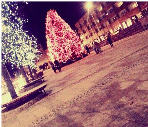 *0* #Poland, gorlice - christmas tree - #rynek