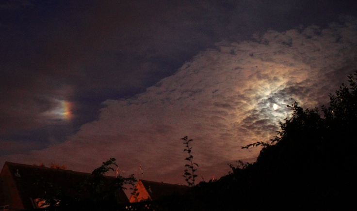 Moon DogTaken by barry starling on August 26, 2012histon uk.