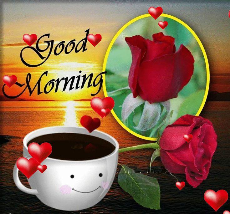 Good Morning Cute : Cute good morning gif immagini con belle citazioni