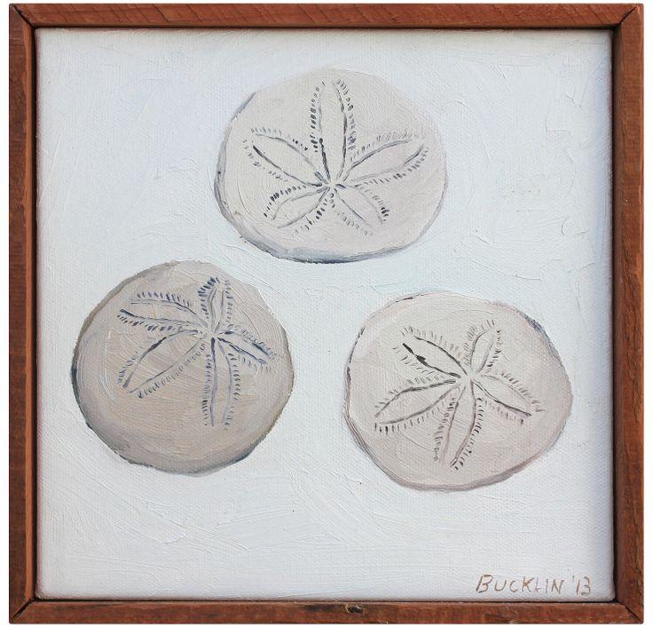 Three Sandollars by John Bucklin