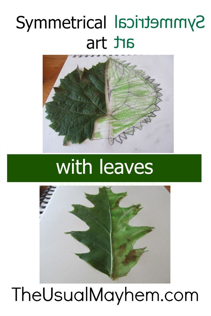 Symmetrical art with leaves: an excellent nature study or form drawing lesson, or just a fun fall art lesson for kids!