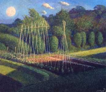 The vegetable plot by James Lynch
