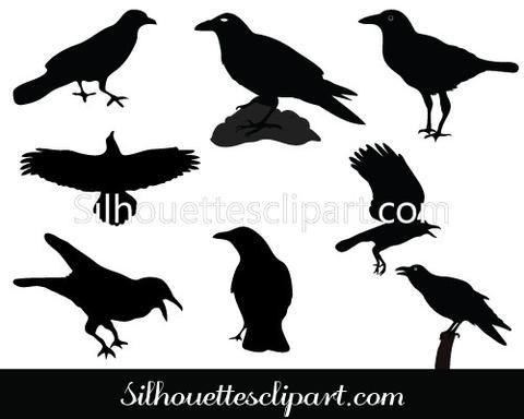 Raven Silhouette Vector Pack