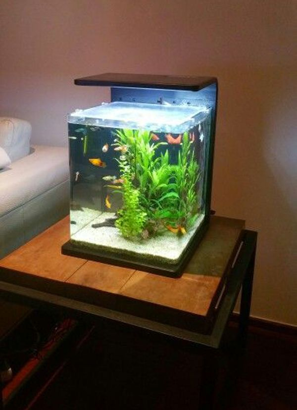 35 Modern Mini Aquarium Designs For Your Small Spaces Fish Aquarium Decorations Mini Aquarium Aquarium Design
