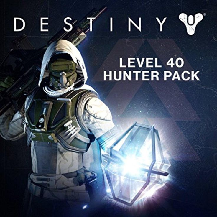 Destiny - Level 40 Hunter Pack - PS4 [Digital Code] - Brought to you by Avarsha.com