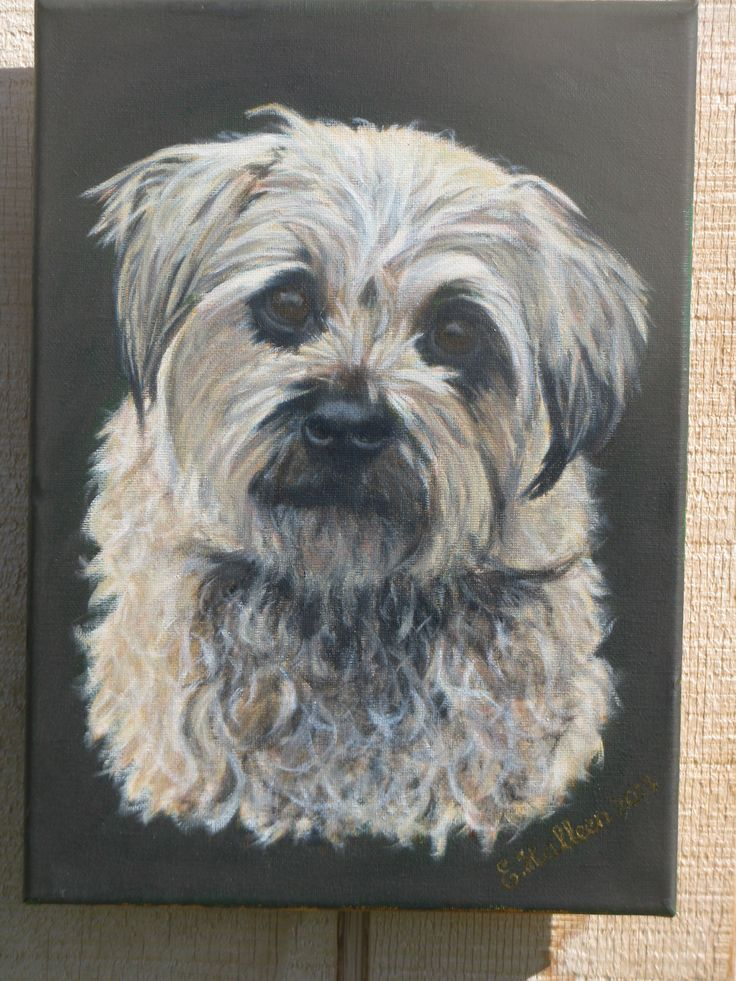 This is Hamish, a little Border Terrier. A private commission.