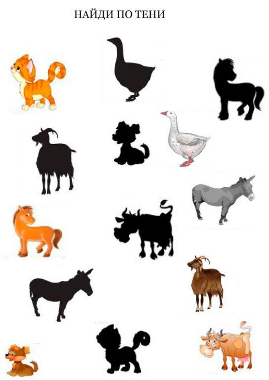 """Развивающие задания """"Домашние животные"""" - Babyblog.ru"""