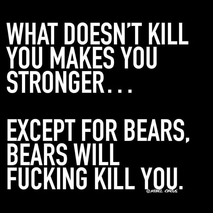 Rebel Circus: What doesn't kill you makers you stronger... except for bears. Bears will fucking kill you.