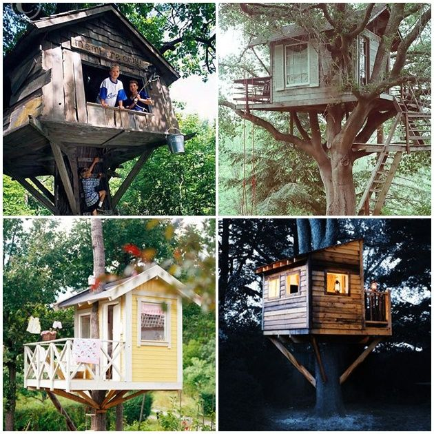 Casa na árvore                                                                                                                                                      Mais