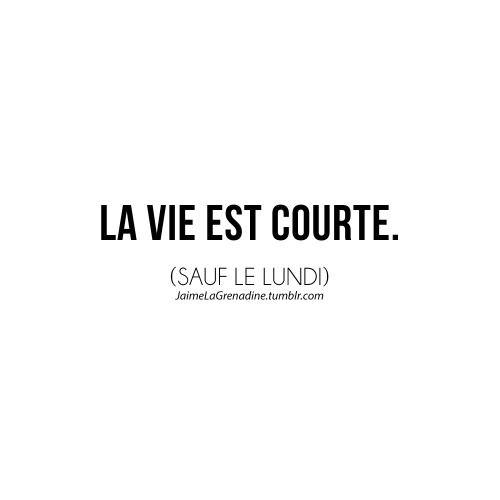 La vie est courte. (Sauf le lundi) - #JaimeLaGrenadine #citation #punchline #lundi #monday