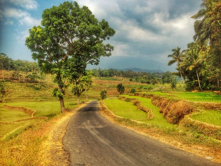 One fine day in Karanggandu, Karanganyar