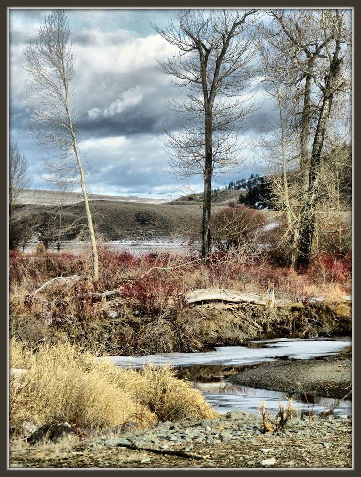 Colours on the Douglas Lake Ranch
