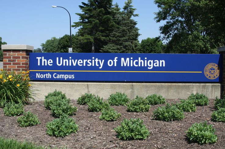 I want to go to The University of Michigan collage
