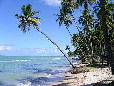Carneiros beach, Alagoas, Brazil