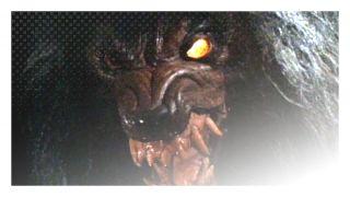 Howling IV: The Original Nightmare (1988) http://terror.ca/movie/tt0095334