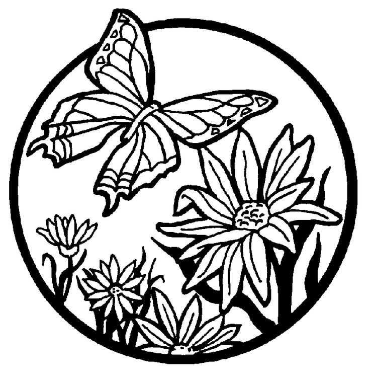 Butterfly Coloring Pages More Butterfly Coloring Pages Butterfly Coloring Page Flower Coloring Pages Coloring Pages To Print