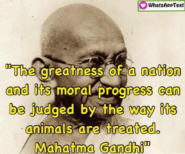 10 Best Famous Inspiring Gandhi Quotes Images On Pinterest