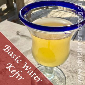 basic_water_kefir