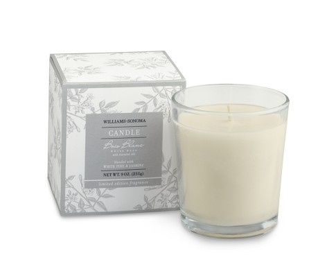 Williams-Sonoma Essential Oils Collection Boxed Candle, Bois Blanc