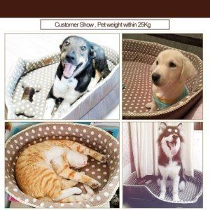 Andogo offers luxury #DogBeds for sale on heavy discount rates. These #WashableDogBeds can used for small and large #Dogs.  http://andogo.com/dog-bed/