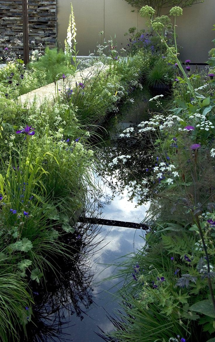 beautiful plant lined garden water feature | adamchristopherdesign.co.uk