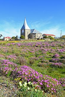 Kamieskroon is a one-horse town that blazes with colour when Namaqualand bursts…