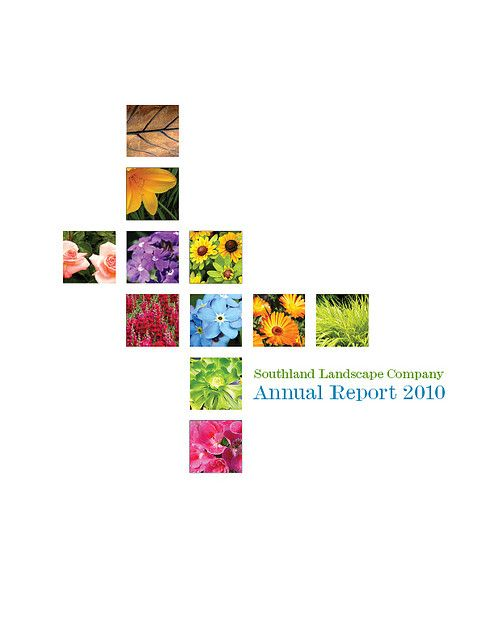 Annual Report Book Cover Design ~ Best book report cover designs images on pinterest