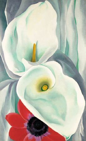 Georgia O'Keeffe; Calla Lilies with Red Anemone