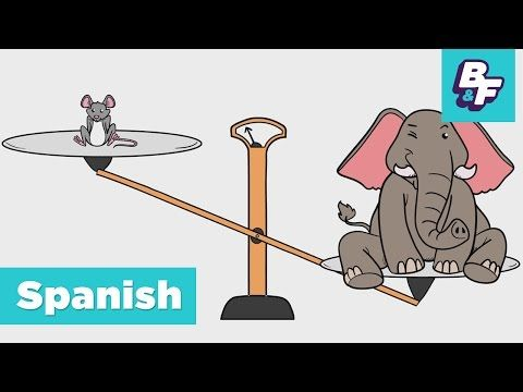 Learn Spanish Opposite Words for Children with BASHO & FRIENDS - Los Opuestos - YouTube