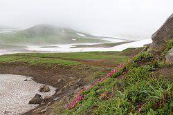 Volcano Mutnovsky, Petropavlovsk-Kamchatsky: Zobrazte recenze, články a fotografi z Volcano Mutnovsky na webu TripAdvisor.