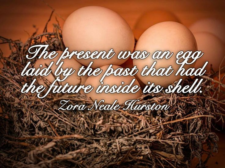 The present was an egg laid by the past that had the future inside its shell. Zora Neale Hurston #SundayMotivational #Nulaid