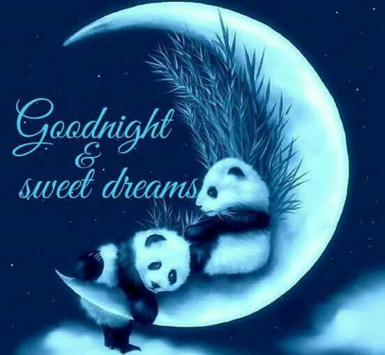 Goodnight & Sweet Dreams