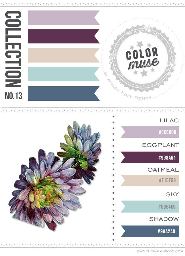 Color Muse Color Scheme Blue Tan Lilac Violet Purple Color Muse Pinterest Muse