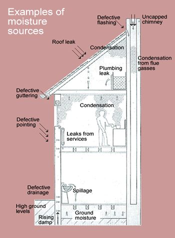 Diagram of building showing moisture sources