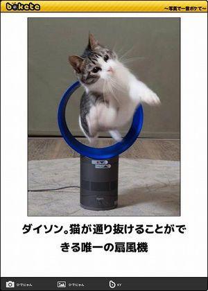【ボケて】最新ボケランキング\u0026殿堂傑作ネタアーカイブ【bokete】 ,