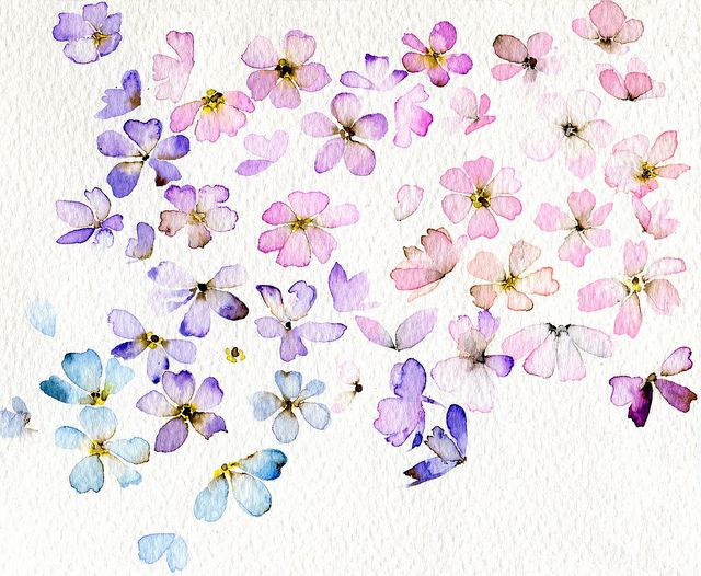 Delicate watercolour petals and blooms by creyonbonito, via Flickr