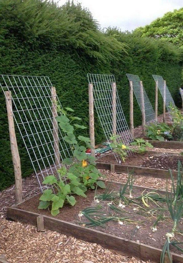47 Beautiful Fruit And Vegetable Garden Ideas 42 Aacmm Com Backyard Vegetable Gardens Vegetable Garden Design Small Vegetable Gardens