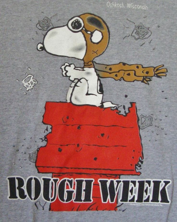 Peanuts Snoopy Red Baron T-shirt Large Rough Week Oshkosh Wisconsin Gray Mens                                                                                                                                                     More