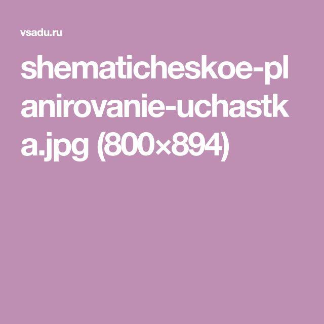 shematicheskoe-planirovanie-uchastka.jpg (800×894)