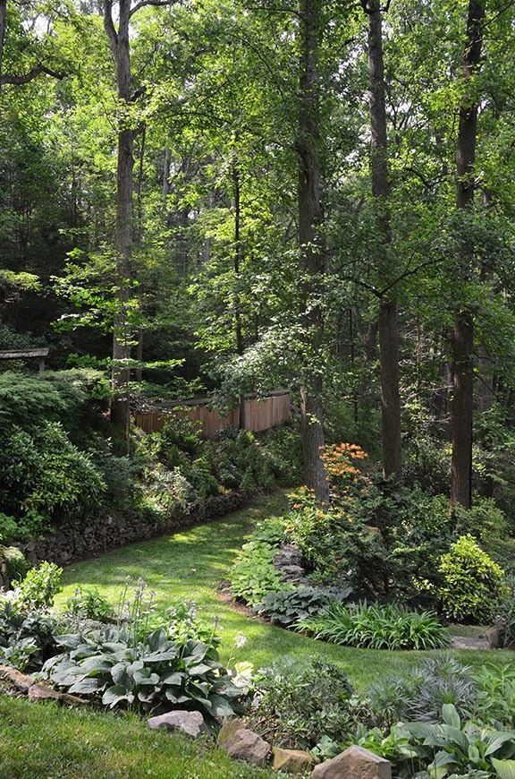 1000 images about moss shade rock gardens on pinterest for Rock garden designs shade