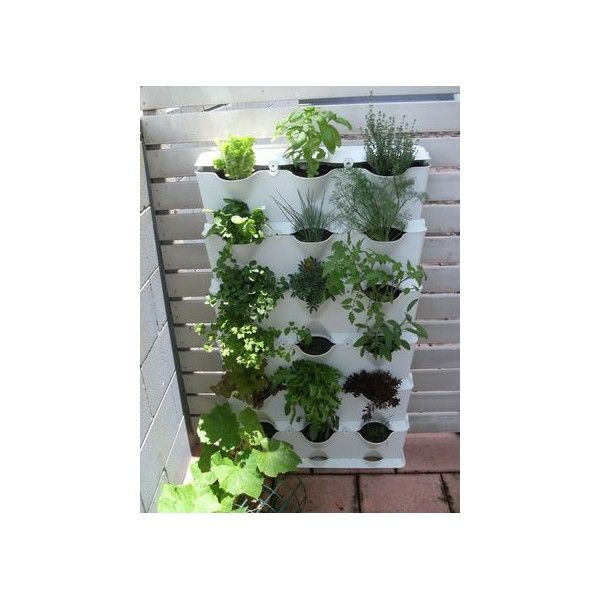 Minigarden is suitable for growing fresh aromatic herbs in for Wall garden system