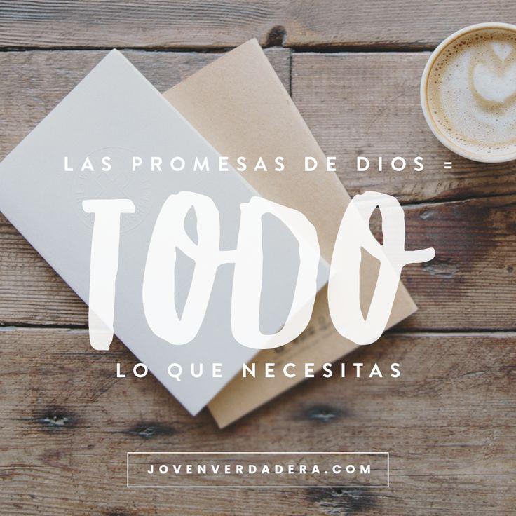 ¡Tienes todo lo que necesitas!   Leamos la Biblia juntas   2 Pedr   Joven Verdadera Blog   Aviva Nuestros Corazones
