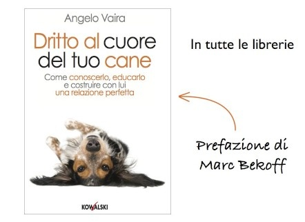Un libro speciale da leggere tutto d'un fiato per chi ama i cani e vuole entrare in sintonia con il proprio amico a 4zampe :)