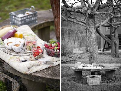 Fotograf Johanna Frenkel: Picknickmat för Green Kitchen Stories