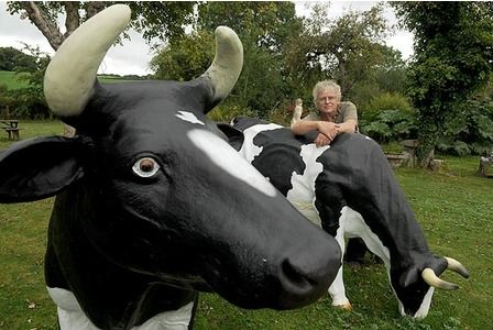 If you need   fibreglass   cows –  you're in luck